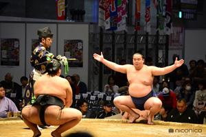 「ニコニコ超会議2015」昨年の「大相撲 超会議場所」の様子 (C) niwango, inc. All rights reserved.
